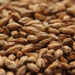 Beech Smoked Barley Malt-0