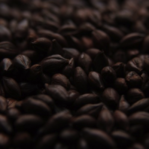Black Malt-0