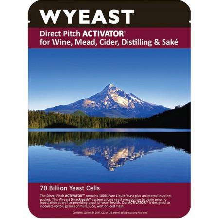 Wyeast 4184 - Sweet Mead-0